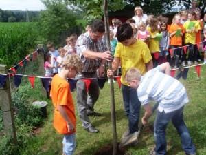 Baumbepflanzung, 20.07.2012